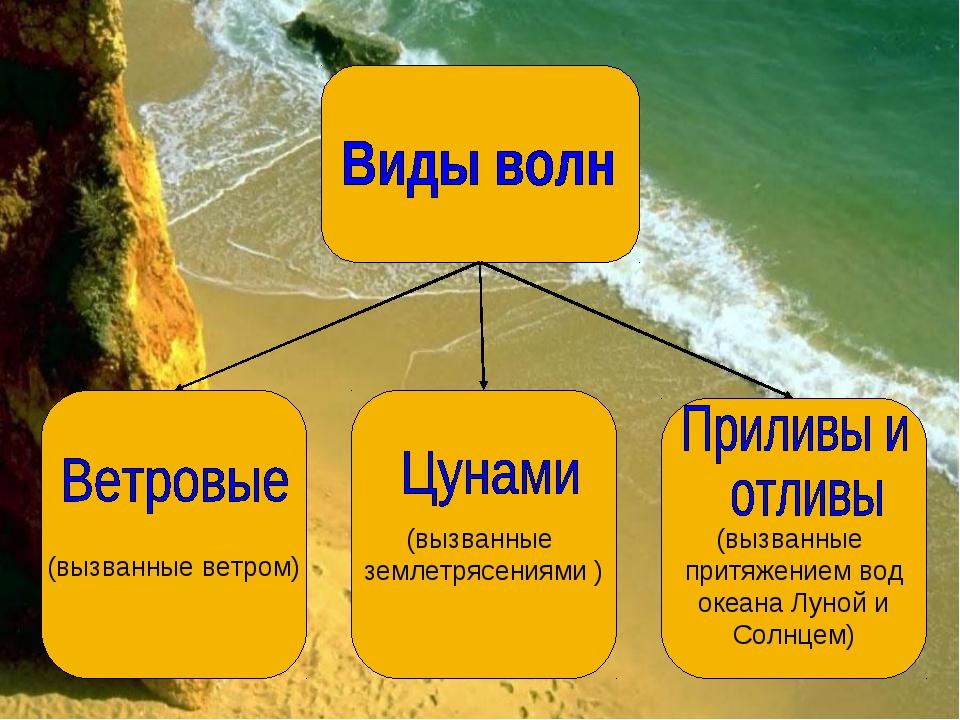 (вызванные притяжением вод океана Луной и Солнцем) (вызванные землетрясениям...