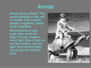 Animals Animals are very different. They can be amphibiotic or land, wild or