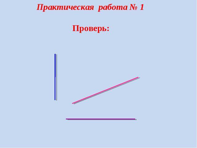 Практическая работа № 1 Проверь:...