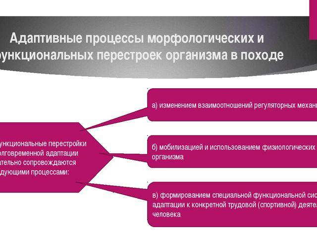 Адаптивные процессы морфологических и функциональных перестроек организма в п...