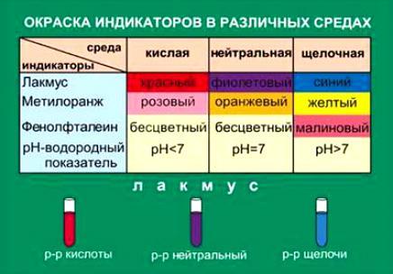http://www.bookin.org.ru/book/785808.jpg