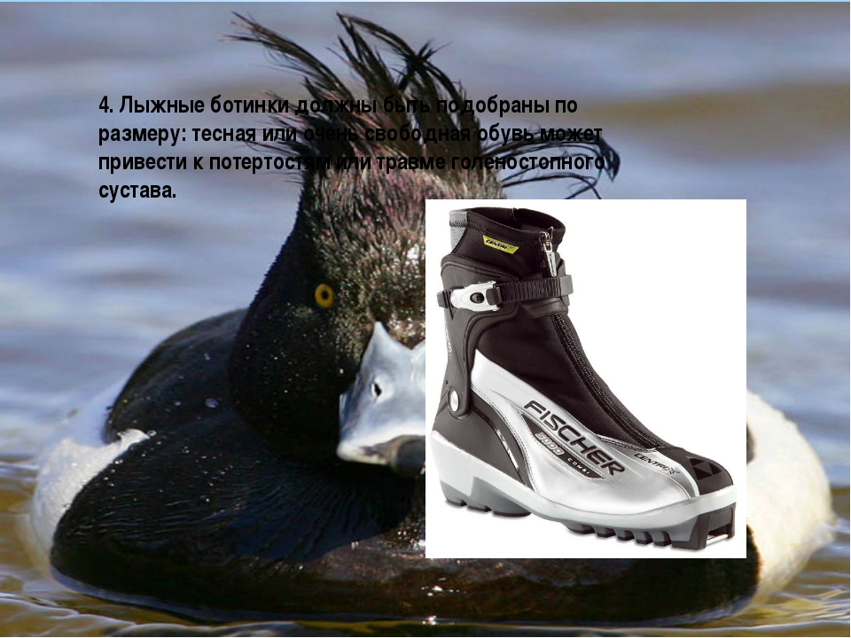 4. Лыжные ботинки должны быть подобраны по размеру: тесная или очень свободна...