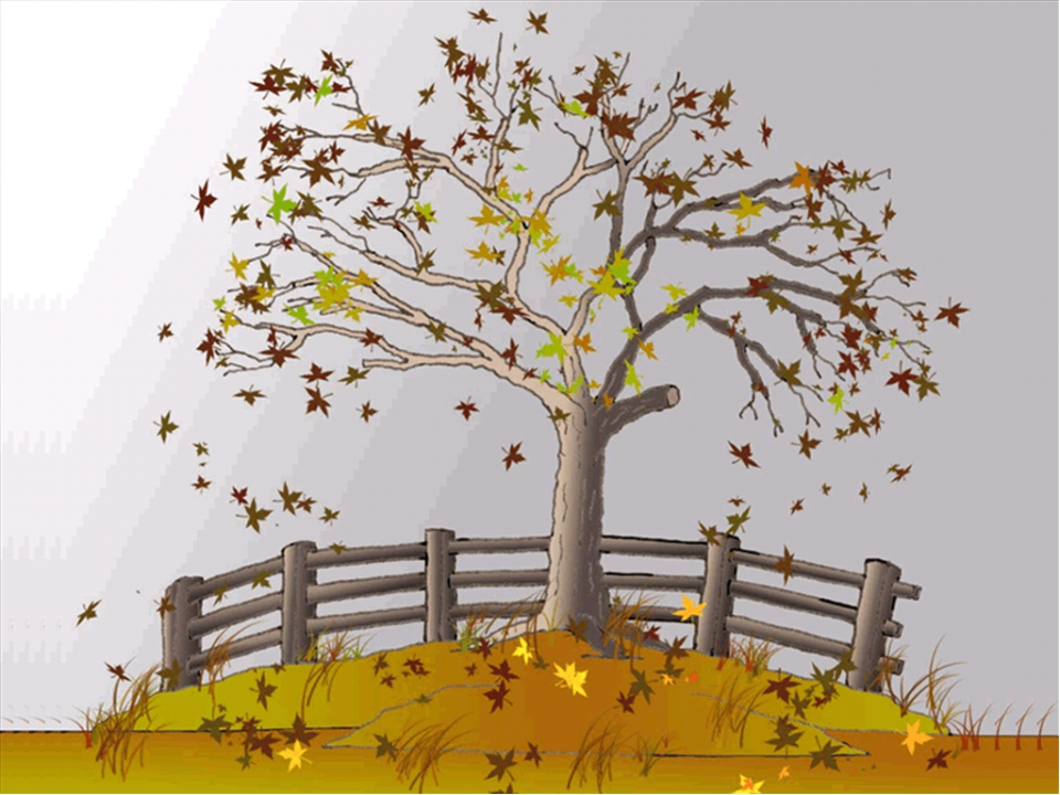 Autumn It is not cold, but is not hot. The days are getting short. Children g...