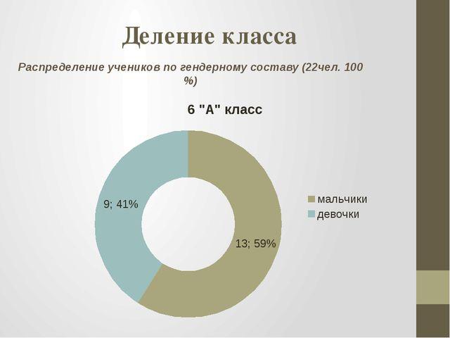 Деление класса Распределение учеников по гендерному составу (22чел. 100 %)