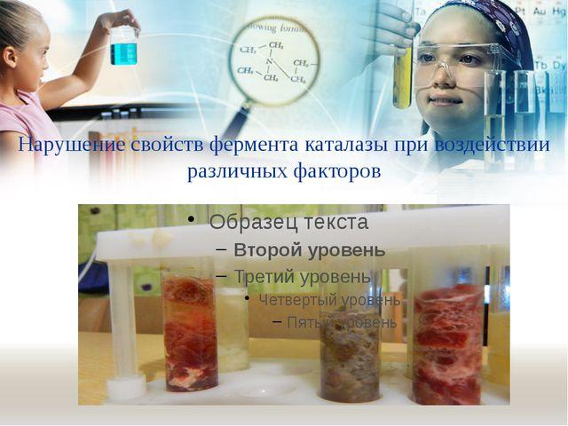 Нарушение свойств фермента каталазы при воздействии различных факторов