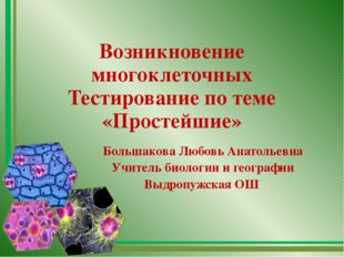 Возникновение многоклеточных Тестирование по теме «Простейшие» Большакова Люб