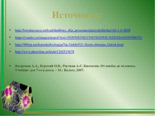 Источники: http://lotoskay.ucoz.ru/load/shablony_dlja_prezentacij/priroda/kle