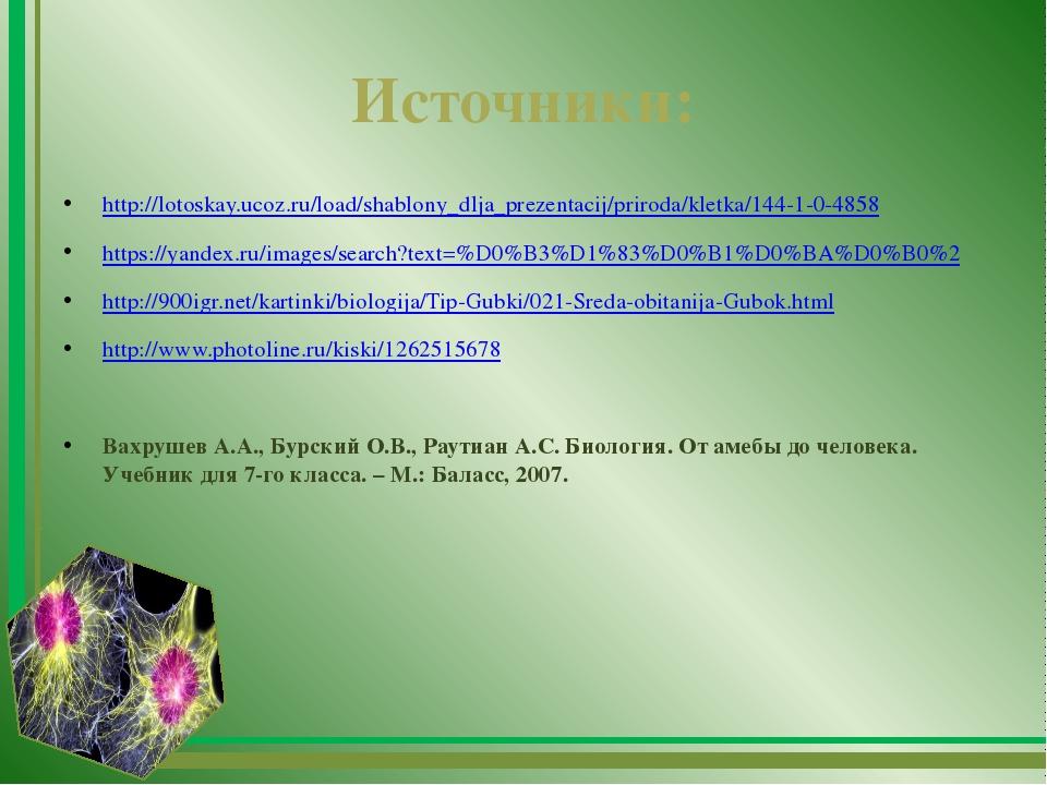 Источники: http://lotoskay.ucoz.ru/load/shablony_dlja_prezentacij/priroda/kle...