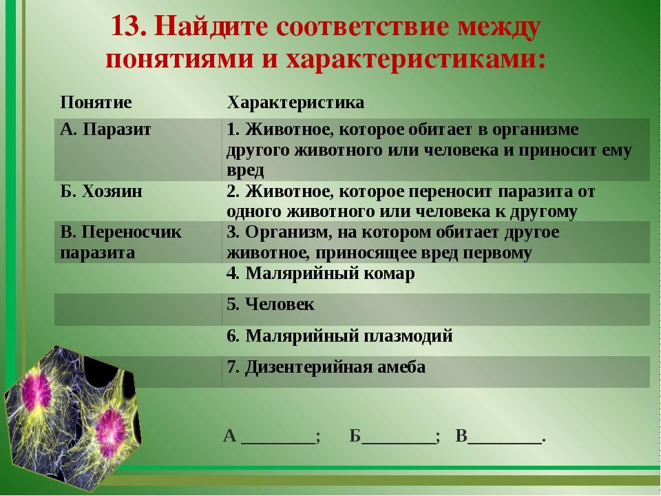 13. Найдите соответствие между понятиями и характеристиками: А ________; Б___...