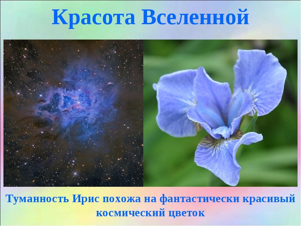 Красота Вселенной Туманность Ирис похожа на фантастически красивый космически...