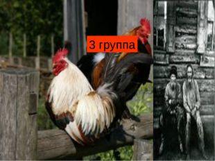 3 группа