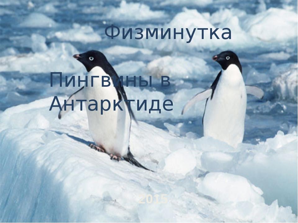Физминутка Пингвины в Антарктиде 2015