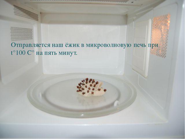 Отправляется наш ёжик в микроволновую печь при t°100 C° на пять минут.