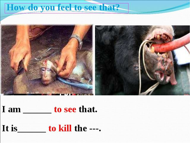 How do you feel to see that? I am ______ to see that. It is______ to kill the...