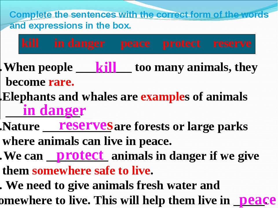 Complete the sentences with the correct form of the words and expressions in...