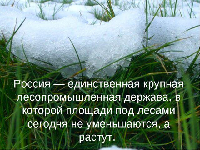 Россия — единственная крупная лесопромышленная держава, в которой площади под...