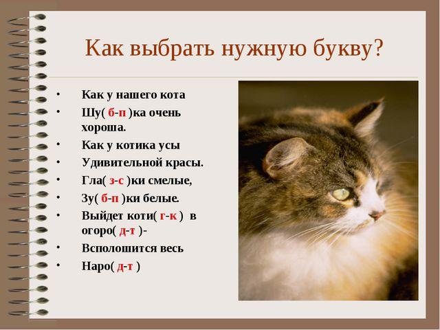 Как выбрать нужную букву? Как у нашего кота Шу( б-п )ка очень хороша. Как у к...