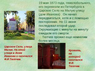 19 мая 1873 года, тяжелобольного, его перевезли из Петербурга в Царское Село