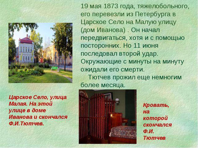 19 мая 1873 года, тяжелобольного, его перевезли из Петербурга в Царское Село...