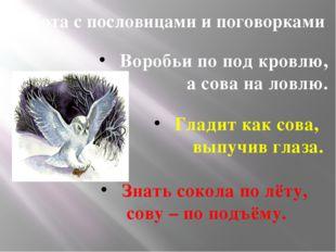 Работа с пословицами и поговорками Воробьи по под кровлю, а сова на ловлю. Гл