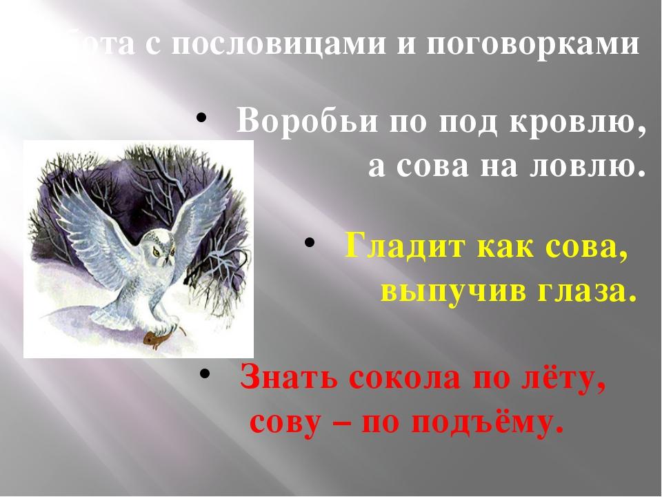 Работа с пословицами и поговорками Воробьи по под кровлю, а сова на ловлю. Гл...