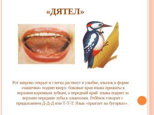 «ДЯТЕЛ» Рот широко открыт и слегка растянут в улыбке, язычок в форме «чашечки