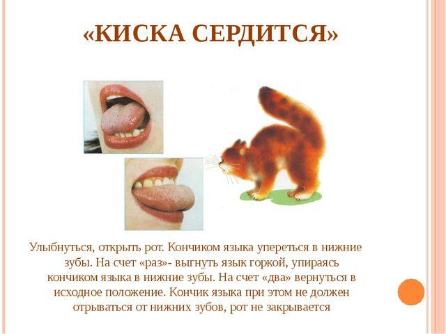«КИСКА СЕРДИТСЯ» Улыбнуться, открыть рот. Кончиком языка упереться в нижние...