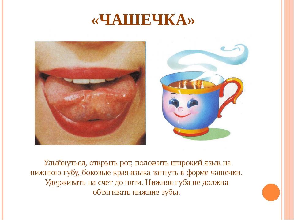 «ЧАШЕЧКА» Улыбнуться, открыть рот, положить широкий язык на нижнюю губу, бок...