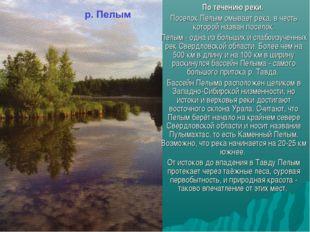 По течению реки. Поселок Пелым омывает река, в честь которой назван поселок.