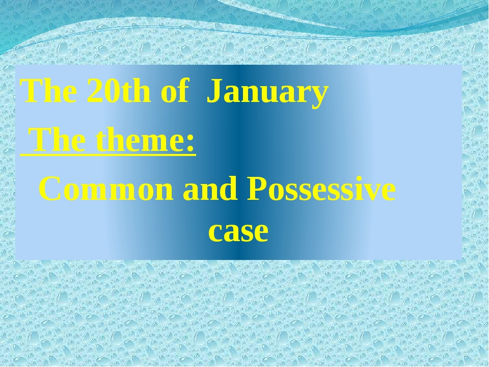 The 20th of January The theme: Common and Possessive case