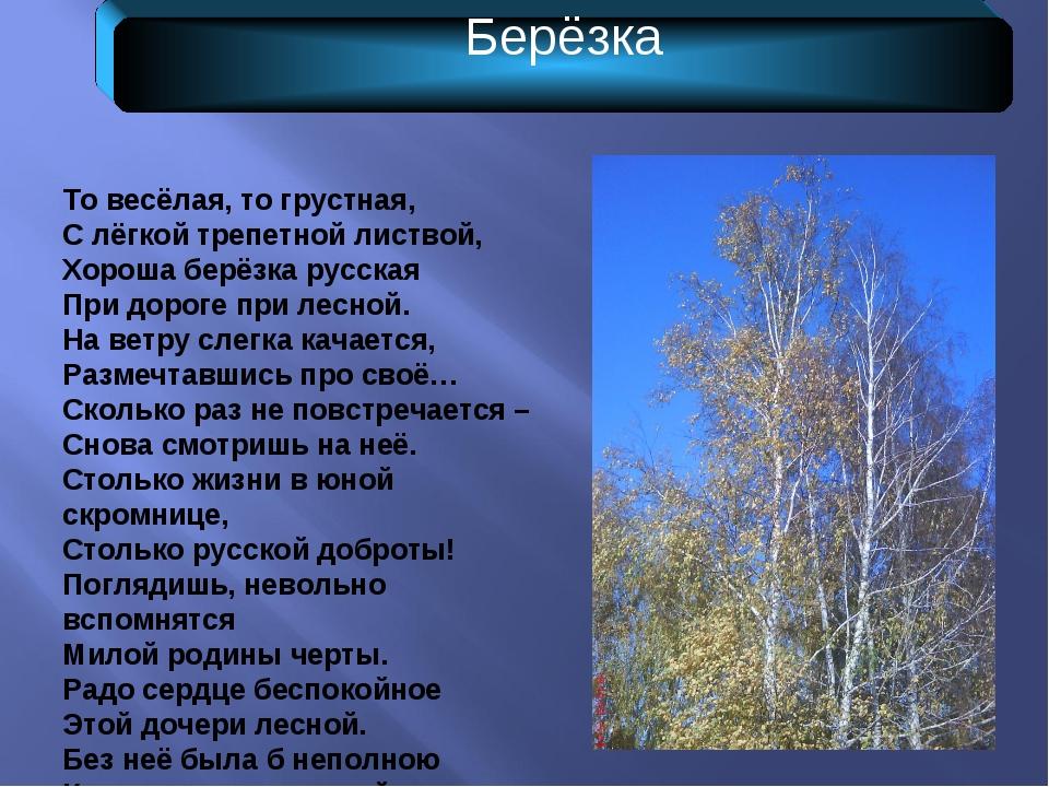 Берёзка То весёлая, то грустная, С лёгкой трепетной листвой, Хороша берёзка р...