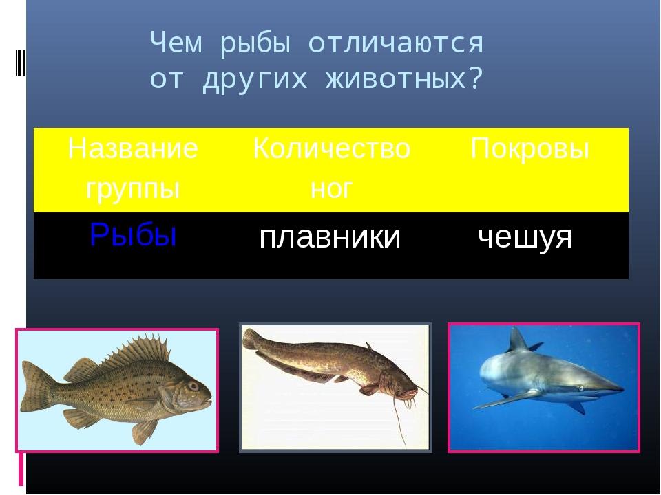 Чем рыбы отличаются от других животных? плавники чешуя Название группыКоличе...