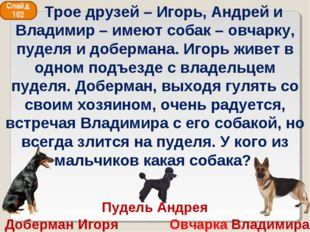 Пудель Андрея Доберман Игоря Овчарка Владимира Слайд 102 Трое друзей – Игорь,