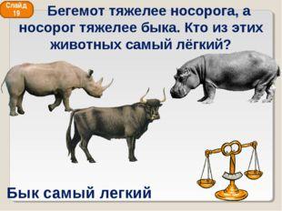 Бык самый легкий Слайд 19 Бегемот тяжелее носорога, а носорог тяжелее быка. К