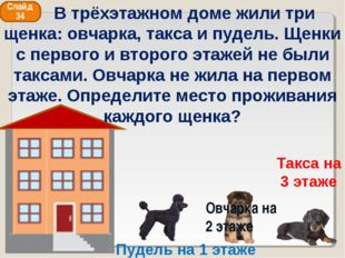 Слайд 34 Такса на 3 этаже Овчарка на 2 этаже Пудель на 1 этаже В трёхэтажном