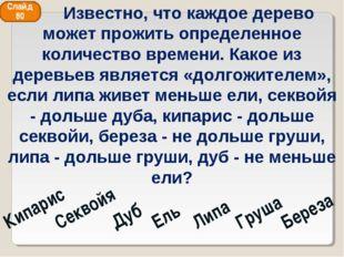 Кипарис Секвойя Дуб Ель Липа Груша Береза Слайд 80 Известно, что каждое дерев