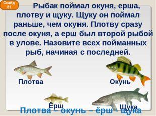 Плотва – окунь – ёрш - щука Слайд 81 Рыбак поймал окуня, ерша, плотву и щуку.