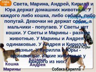 Попугайчики Светы Кошка Марины Собака Кирилла Собака Юры Слайд 92 Котенок Анд