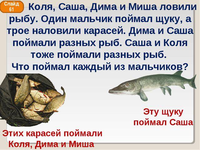 Этих карасей поймали Коля, Дима и Миша Эту щуку поймал Саша Слайд 61 Коля, Са...