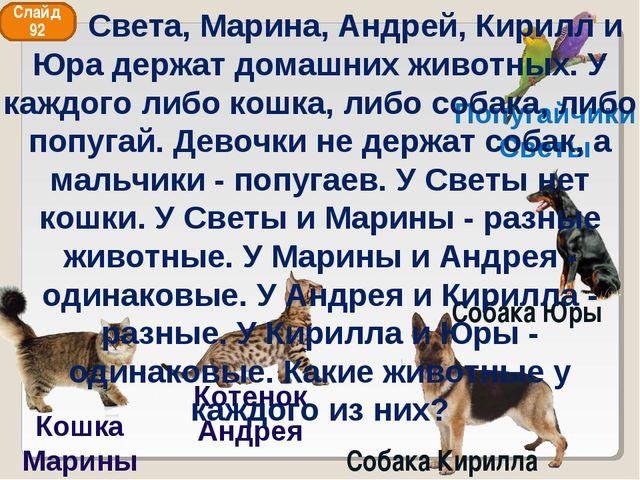 Попугайчики Светы Кошка Марины Собака Кирилла Собака Юры Слайд 92 Котенок Анд...