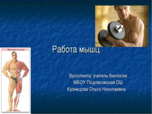 Работа мышц Выполнила: учитель биологии МБОУ Подлесовская ОШ Кузнецова Ольга