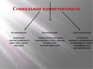 Социальная компетентность
