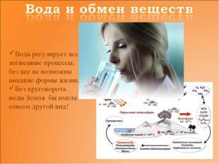 Вода регулирует все жизненные процессы, без нее не возможны никакие формы жиз