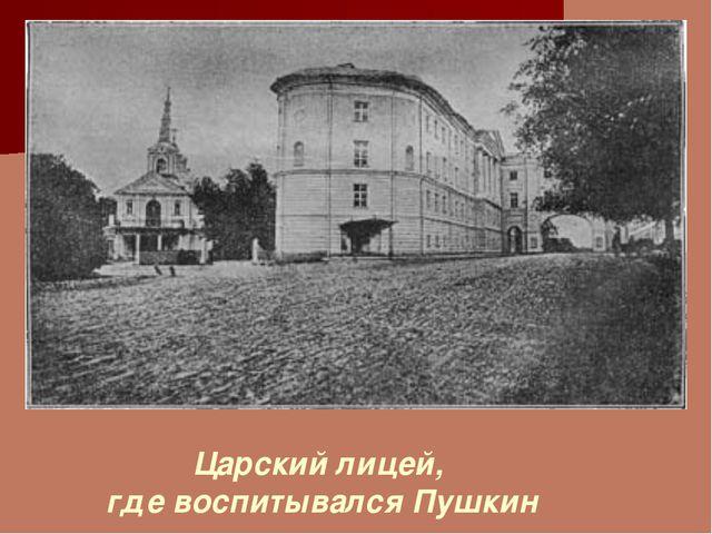 Царский лицей, где воспитывался Пушкин