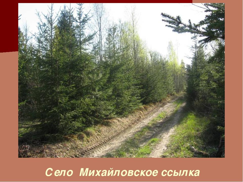 Село Михайловское ссылка