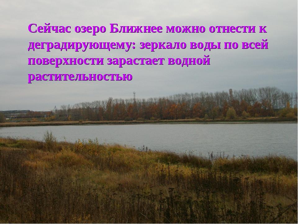 Сейчас озеро Ближнее можно отнести к деградирующему: зеркало воды по всей пов...