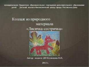 Автор - педагог ДО Кузнецова О.Н. 2013 г. муниципальное бюджетное образовател