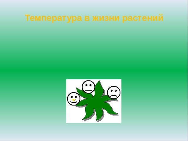 Температура в жизни растений