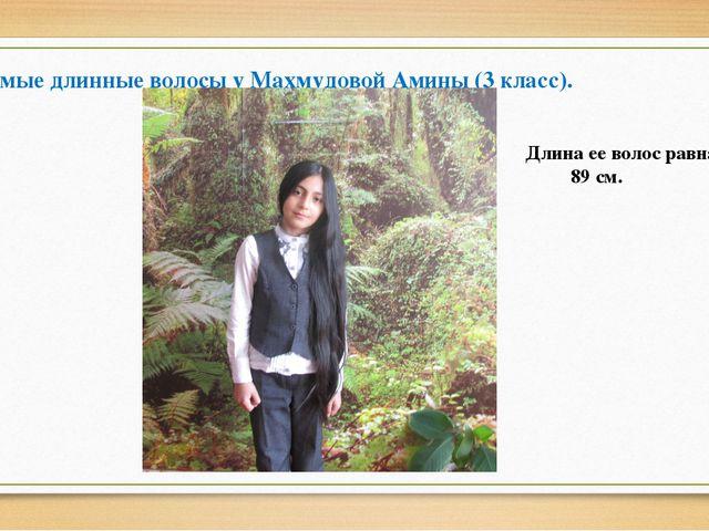 Самые длинные волосы у Махмудовой Амины (3 класс). Длина ее волос равна 89 см.