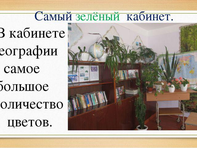 Самый зелёный кабинет. В кабинете географии самое большое количество цветов.